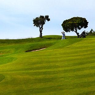 Espart - Quinta da Penha Longa - fotografia 360º e panorâmica - visita virtual